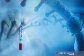 Pasien balita berusia 3 tahun dinyatakan sembuh dari COVID-19