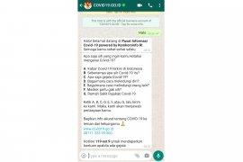 Ini nomor resmi hotline chatbot WhatsApp  COVID-19