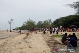 Warga Belolaut tanam 2.500 bibit mangrove