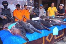 Ungkap perniagaan satwa lumba-lumba