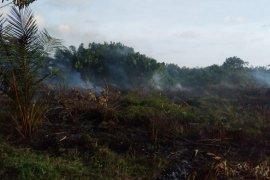 32 titik panas terdeteksi muncul di Aceh