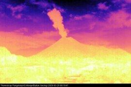 Gunung Merapi meletus dengan tinggi kolom 1.500 meter
