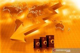 Harga minyak jatuh di tengah ketidakpastian pemotongan produksi akibat pandemi virus corona
