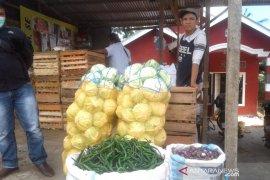 Petani sayuran di Rejang Lebong keluhkan rendahnya harga jual