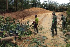 Peduli keselamatan pengguna jalan, prajurit TMMD bersikan pohon tumbang
