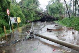 Puting beliung terjang Citeureup Bogor tumbangkan sejumlah pohon besar