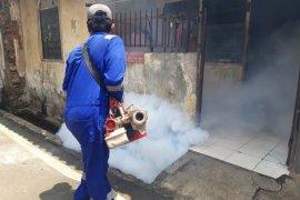 Jubir Pemerintah: Waspadai Demam Berdarah di tengah pandemi COVID-19