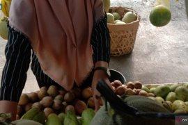 Harga jeruk manis di Banda Aceh capai Rp40 ribu per kilogram