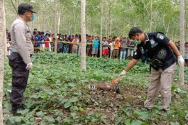 Pengangon ternak di Simalungun temukan mayat remaja di areal perkebunan