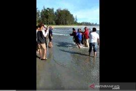 Mancing di pantai, seorang pemuda di Bengkulu tewas tergulung ombak
