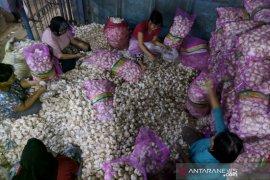 Harga bawang putih dan bombai impor turun di pasar induk Garut