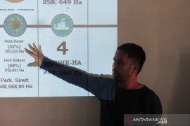 Walhi pertanyakan izin pengambilan batu giok di Nagan Raya