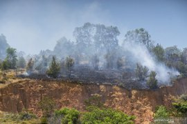 16 titik panas terdeteksi di Sumatera, dua ada di Bengkulu