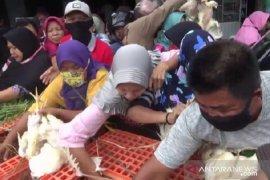 Peternak di Madiun bagikan ribuan ayam gratis kepada warga