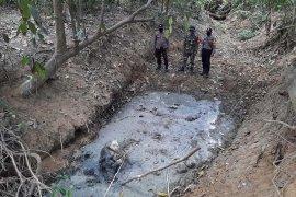 Gajah sumatra ditemukan jadi bangkai