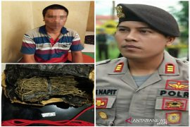 Polisi Tapteng amankan satu paket sabu dan 100 gr ganja kering