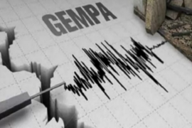 Gempa bumi magnitudo 4 terjadi di Taipa, Poso