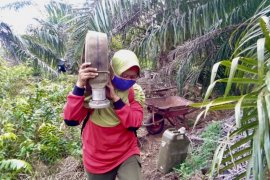 Guru Besar UI anjurkan warga di kawasan rawan asap karhutla direkomendasikan menggunakan masker N95, termasuk Jambi