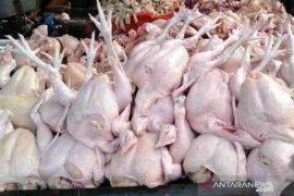 Waduh, harga ayam potong di Sukabumi anjlok di bawah Rp10.000/kg