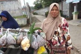 Lani pedagang sayur di Lebak terinsipirasi Kartini lepaskan dari kemiskinan