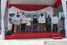 ACT berdayakan petani lewat Masyarakat Produsen Pangan