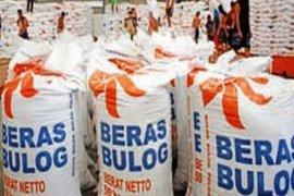 Bulog  targetkan 18.000 ton serapan gabah kering giling