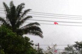 PT PLN: Pemadaman listrik di Aceh Barat karena himpitan kabel listrik