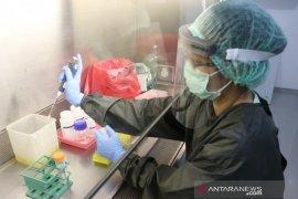 273 sampel pasien terduga COVID-19 telah diuji di Lab IPB