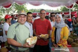 Mantan Menteri BUMN terkesan dan dukung Babel kembangkan durian ekspor