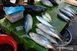 Ikan segar di pasar Ambon mulai langka