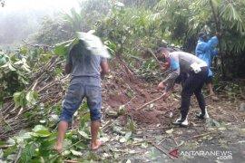 Sejumlah kecamatan di Rejang Lebong rawan longsor
