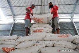 Pemerintah perlu mengantisipasi potensi kenaikan harga beras akhir tahun