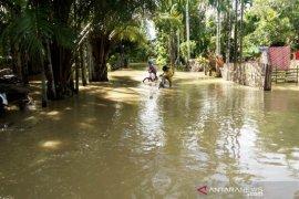 Banjir rendam 11 desa di Aceh Barat