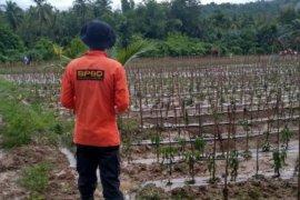 Banjir rendam enam desa di Bireuen