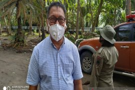 COVID-19 jangkiti 240 orang di Papua
