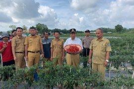 Bupati Bangka Tengah minta petani gunakan dana KUR sesuai peruntukan