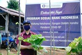 BI kerja sama Distan Maluku dalam menjaga pasokan di tengah pandemi COVID-19