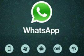 WhatsApp nanti bisa aktif di dua perangkat