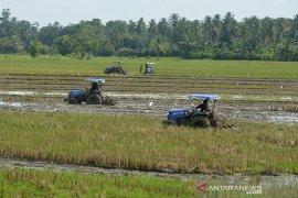TNI bantu percepat musim tanam serentak Aceh Besar