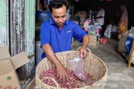 Harga bawang merah capai Rp70 ribu per kilogram di Aceh Timur