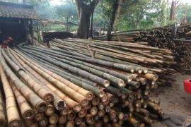 Dampak COVID-19, pendapatan petani bambu di Lebak jadi merosot