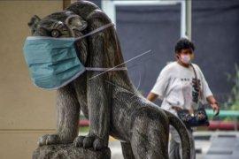 Patung hewan pakai masker