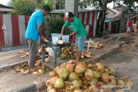 Pedagang buah kelapa muda di Ambon panen rejeki