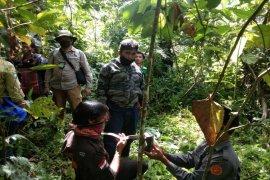 Tim TNGL pasang kamera trap di lokasi lembu warga Batang Serangan Langkat dimangsa harimau