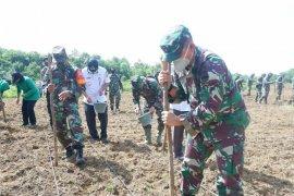 Antisipasi kelangkaan pangan akibat COVID-19, Kodim tanam jagung 7 hektare