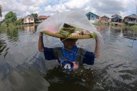 Banjir tak halangi perjuangan mencari nafkah