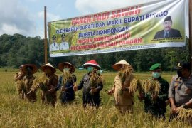 Kabupaten Bungo siap berkontribusi jaga pangan Indonesia