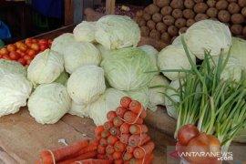 Stok sayur kol di pasar Ambon menipis, harga melonjak