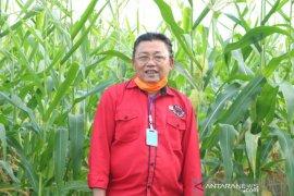 DPR minta Pemda se-Kalimantan Barat serius tangani Pandemi COVID-19