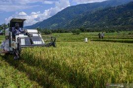 Anggota DPR  Haerudin dorong pemerintah fokus ketahanan pangan saat Corona